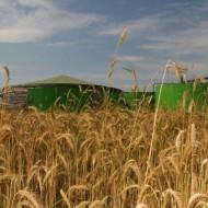 14. biogazownia skrzatusz